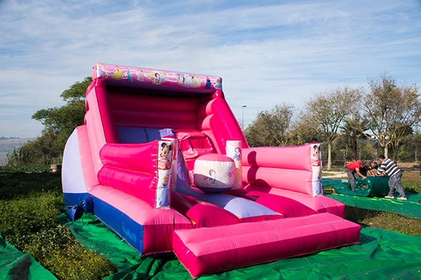 Tobogan Princesas rosa